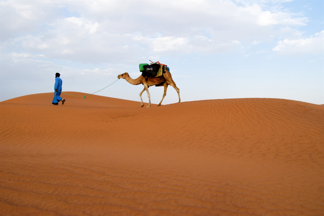Take a camel on a desert trek to explore the Sahara Desert.