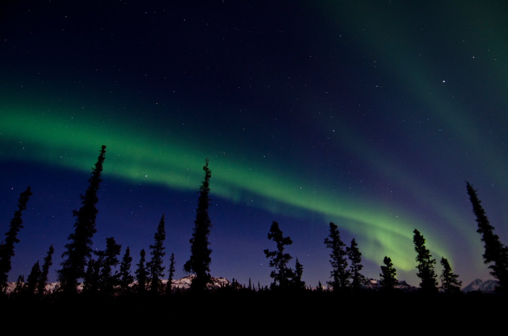 denali northern lights