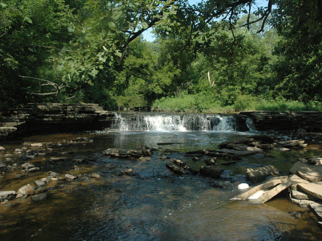 Waterfall Glen Forest Preserve is home to the Waterfall Glen Xtreme 10 trail race on July 11.