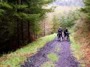 Image for Banks-Vernonia State Trail