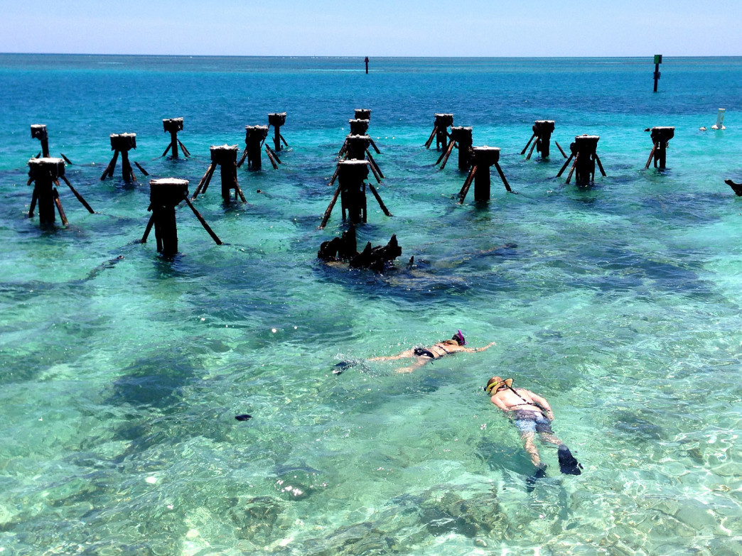 Snorkeling is one of the most popular things to do at Dry Tortugas National Park.