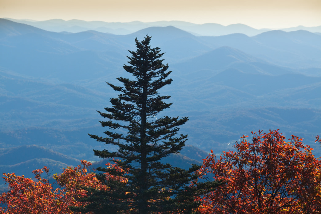 Brasstown Bald offers one of the most scenic—and difficult—hikes in the area.