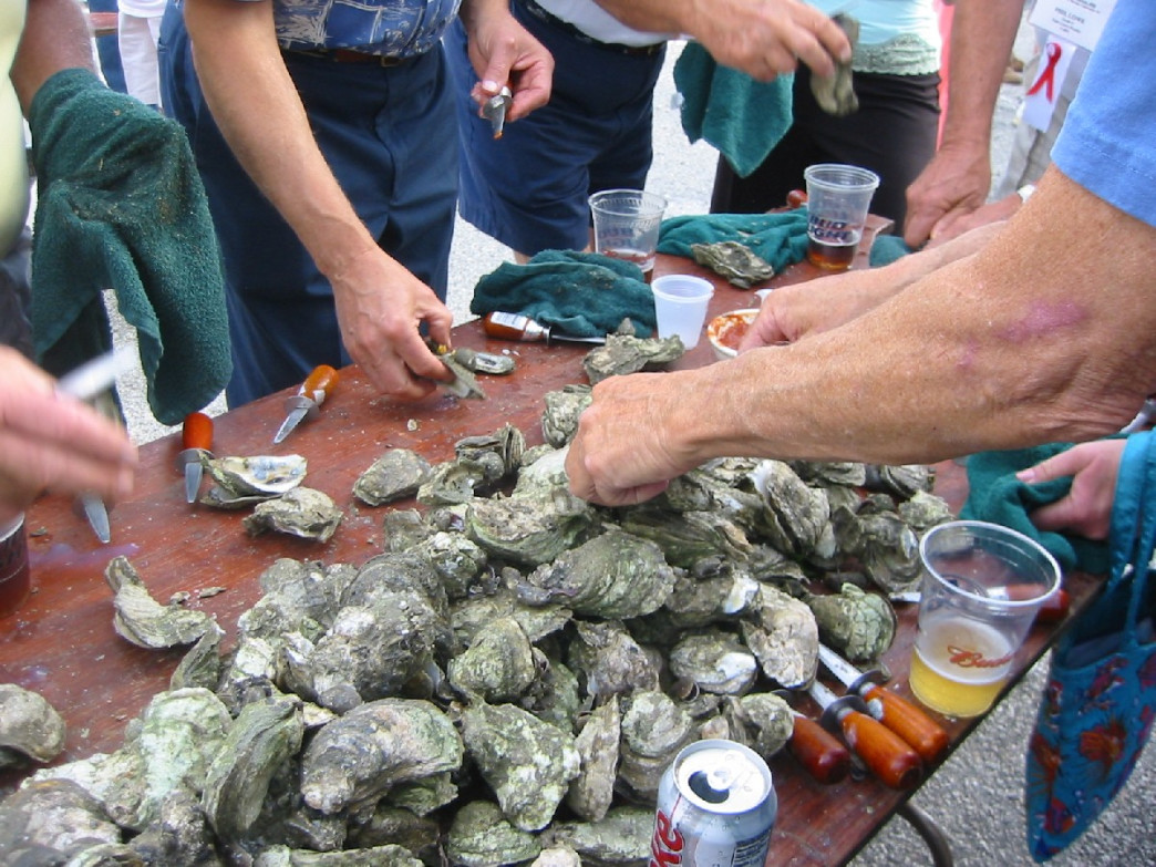 The joy of an oyster roast cannot be beat