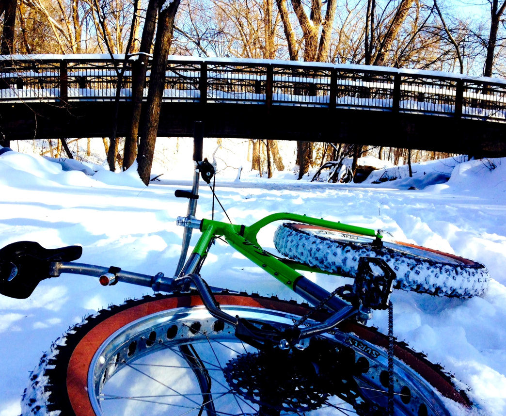 Fat biking in Minnesota.