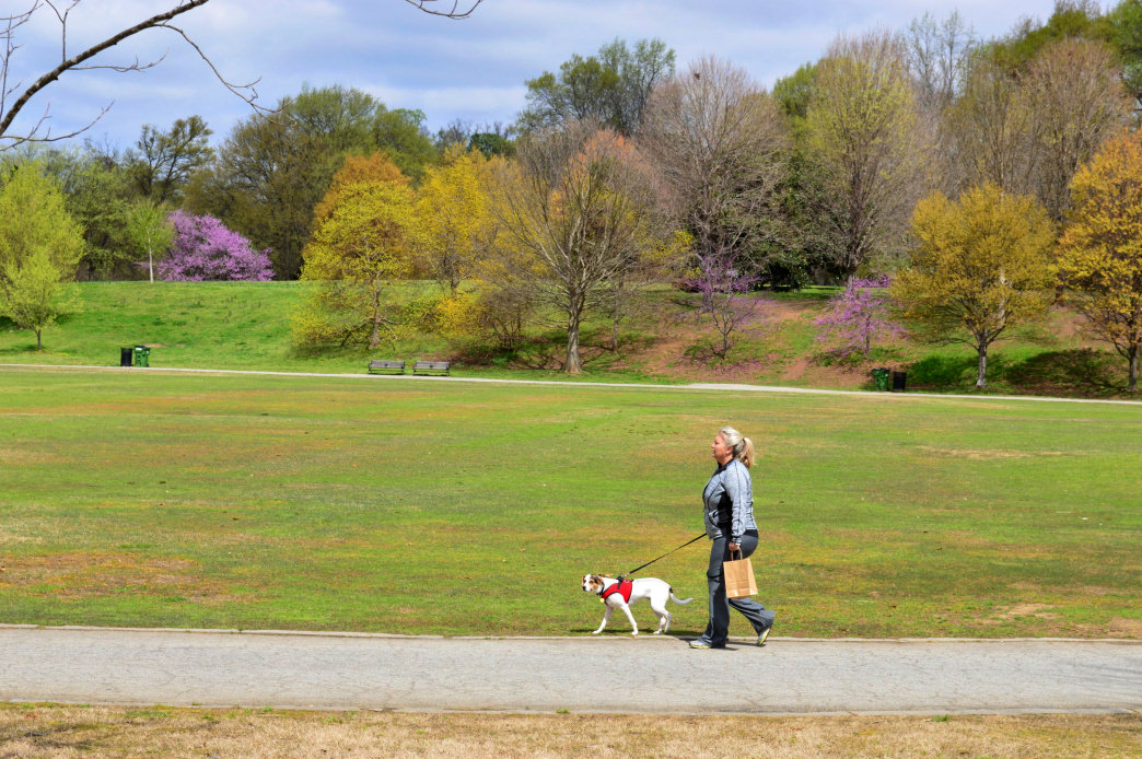 Piedmont Park is one of Atlanta's top attractions for anyone who enjoys the outdoors.
