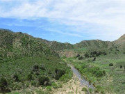 Image for Sespe Creek Trail