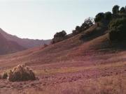 Image for Malibu Creek Trail