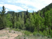 Image for Indian Creek Trail, Pike National Forest