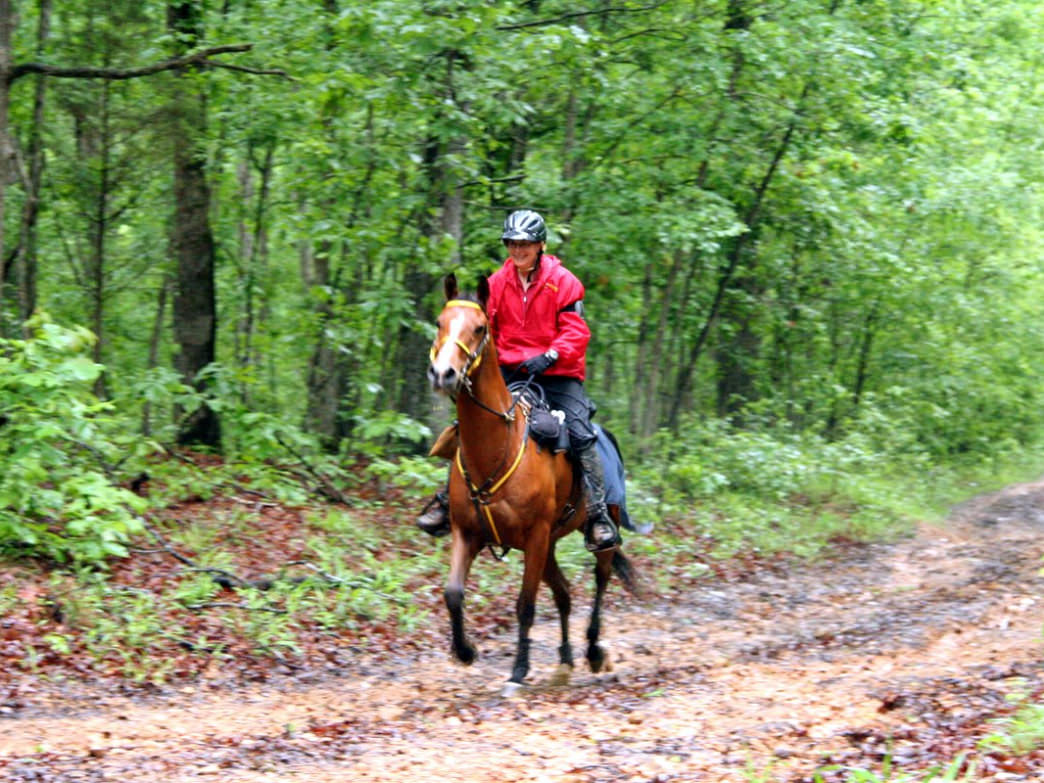 The trail can be hiked, biked, even trekked on horseback!