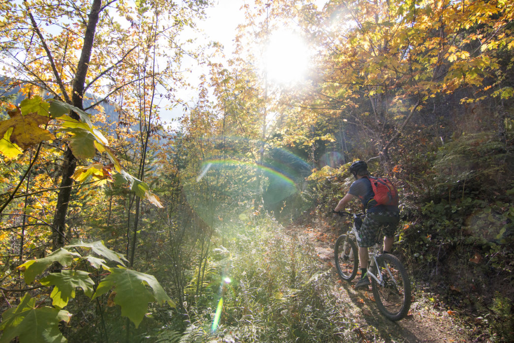 Mountain biking in the fall along the Olympic Discovery Trail's Adventure Route.