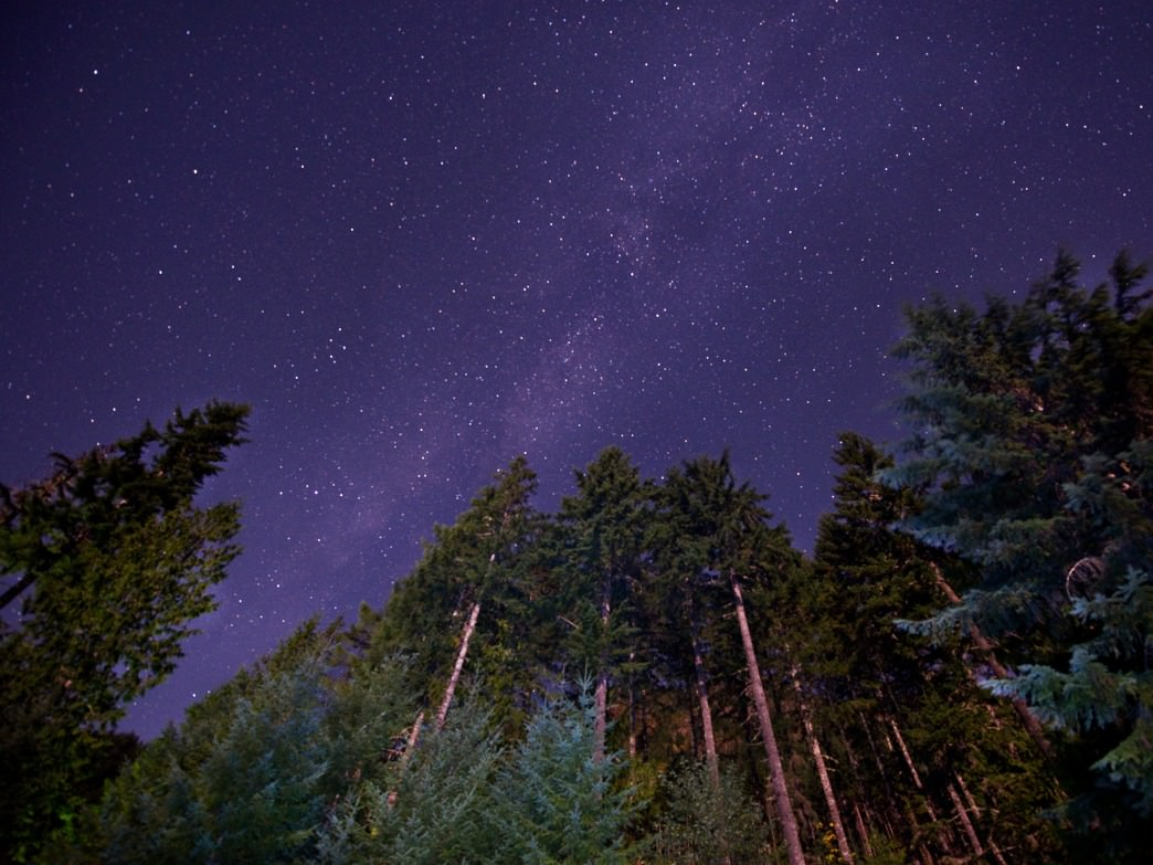 Stargazing is one of the simplest ways to regain perspective.