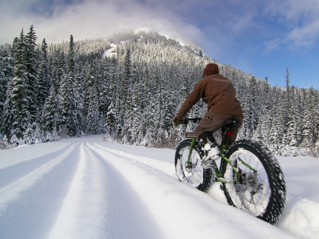 Fat biking is a great way to explore serene winter scenery.