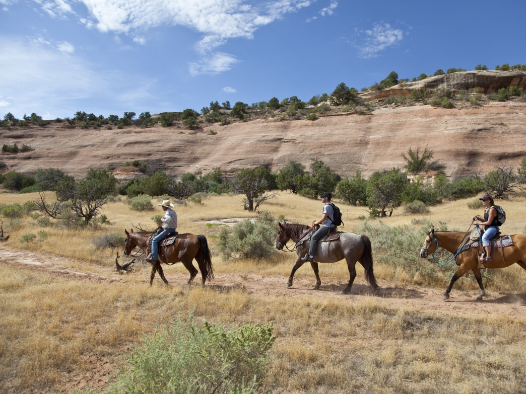 Rimrock Adventures will take you past stunning scenery in search of wild horses.
