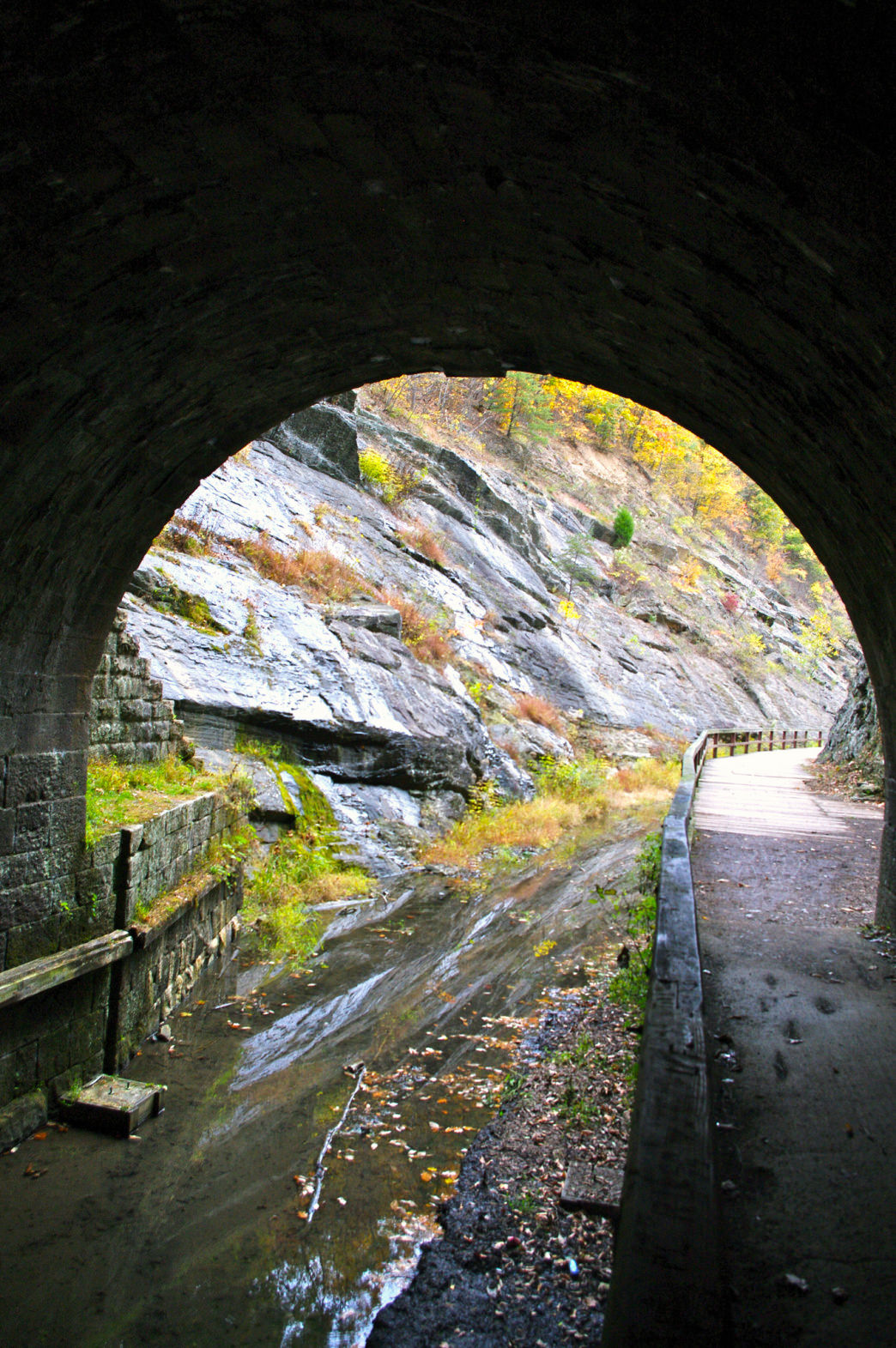 The Paw Paw Tunnel is over 3,000 feet long! You'll want a headlamp for this one.