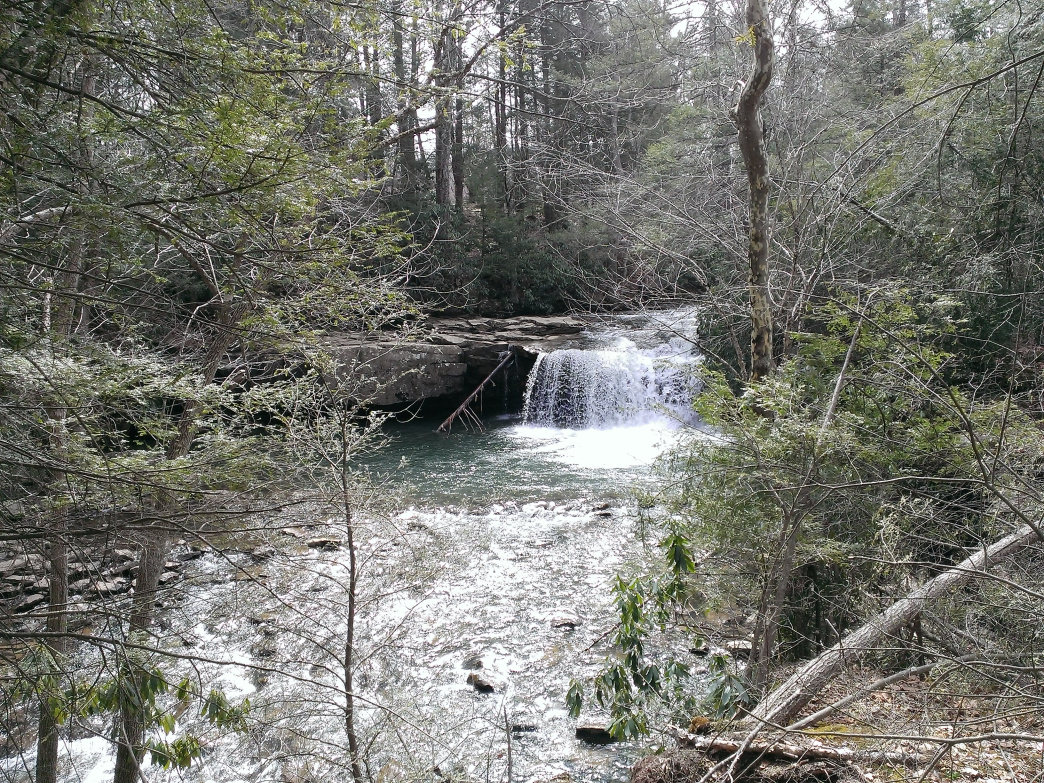 Hominy Falls is a 12-mile long paddle.     DrWebMonkey