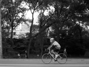 Image for Central Park - Cycling