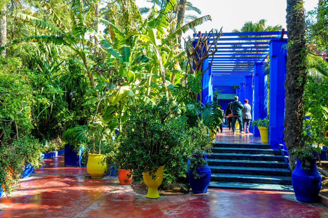 The Majorelle Gardens in Marrakesh was purchased and preserved by fashion designer Yves Saint Laurent.     Julia Rogers