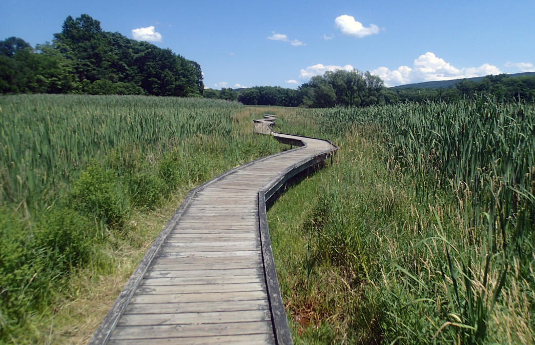 Hike the Appalachian Trail near Delaware Water Gap