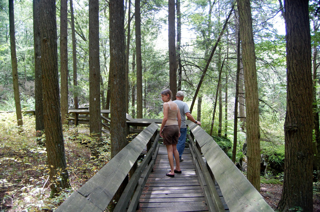 Take in the views from one of the park's boardwalk trails.