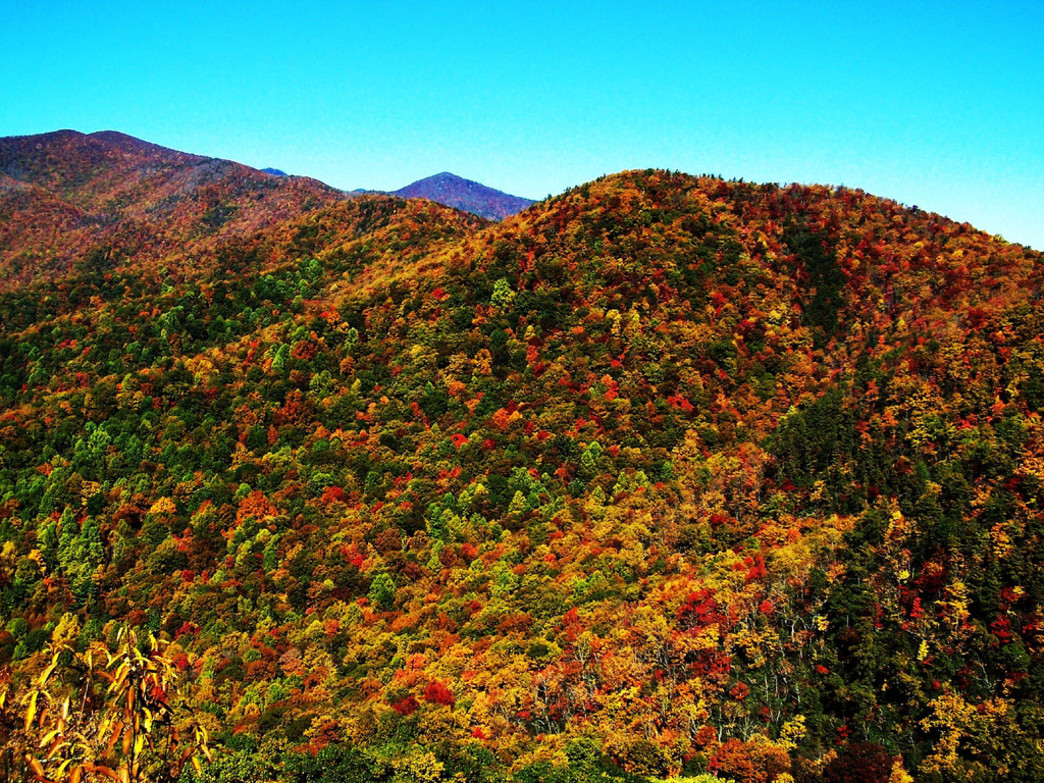 Autumn in the Asheville is easily one of the most spectacular times of year to live and play in the mountains