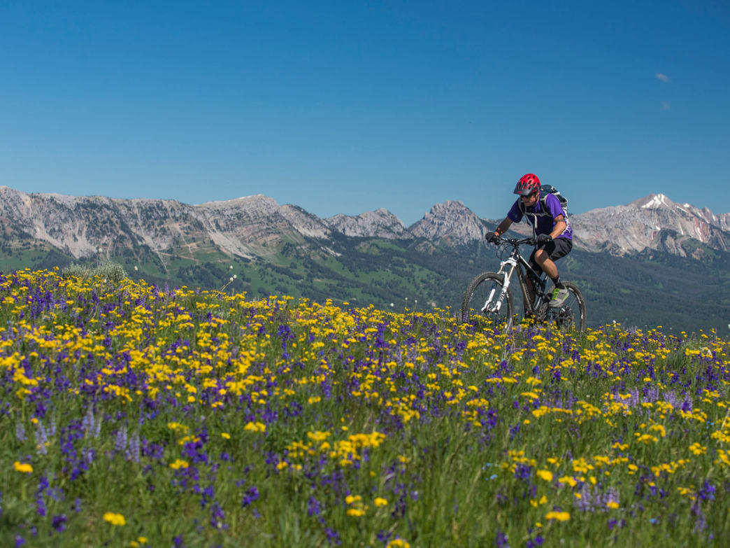Bozeman is surrounded by excellent mountain biking trails for riders of all abilities.