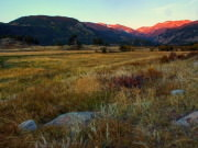 Image for Moraine Park - Rocky Mountain National Park