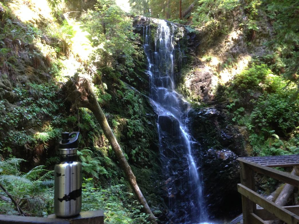 Berry Creek Falls is a highlight of the Skyline-to-the-Sea Trail.