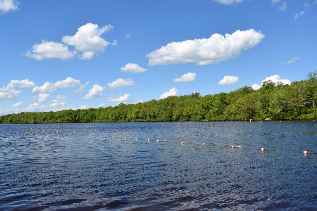 Take In The Beautiful Scenery at Tobyhanna State Park