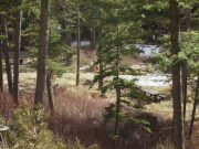Image for Newton Creek Campground