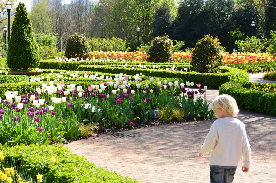 The Atlanta Botanical Garden is a great place for kids to explore.