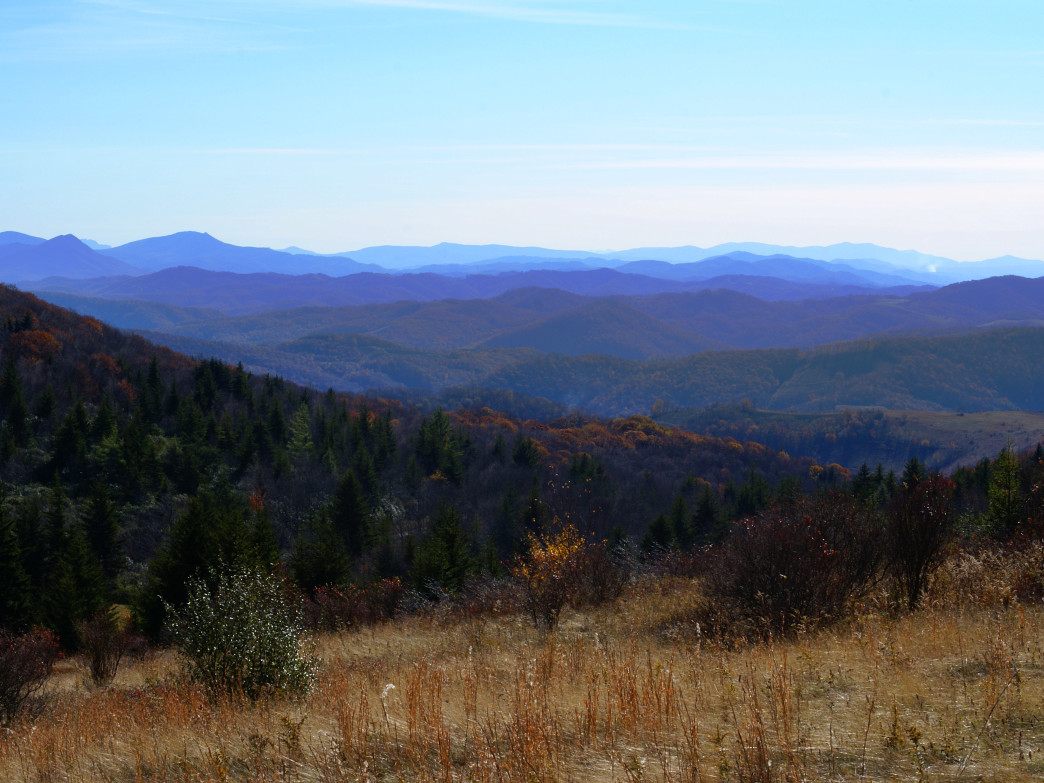 A view of the Grayson Highlands from the Appalachian Trail.