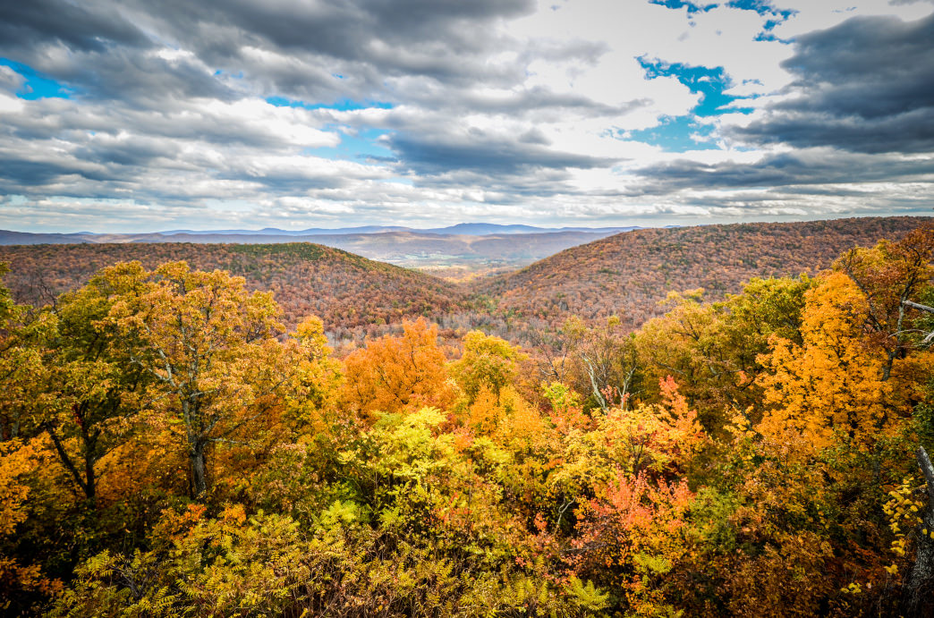 The Shenandoah Valley offers one of the best displays of fall colors in the country.