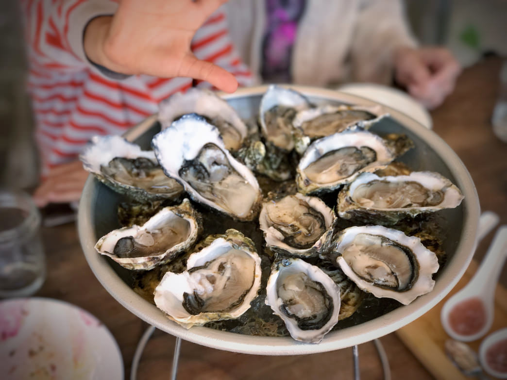 Shellfish can have toxins, or possibly worse, actually get stuck in your throat if you eat them whole.