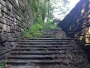 Image for Inwood Hills Park - Trail Running