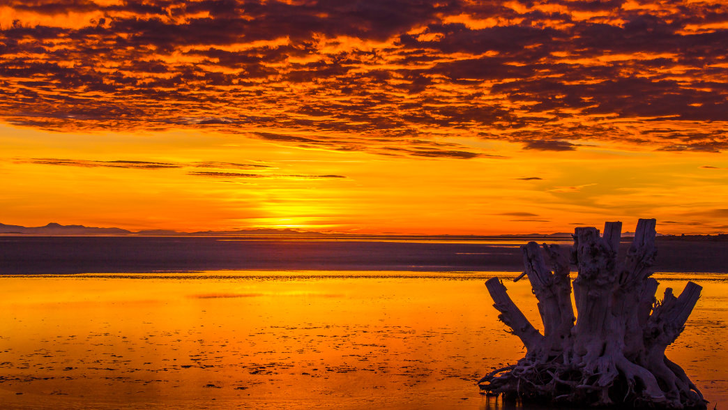 Great Salt Lake is the perfect place watch the sunset.