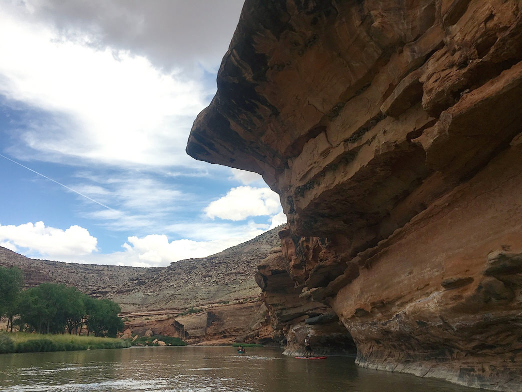 Towering sandstone walls along the Lower Gunnison River make a stunning backdrop.