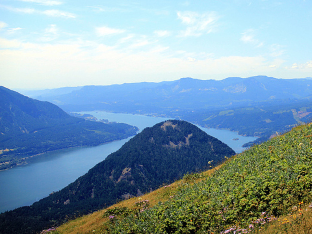 Dog Mountain is awash in wildflowers throughout the spring; it also offers outstanding views of the Columbia River Gorge.