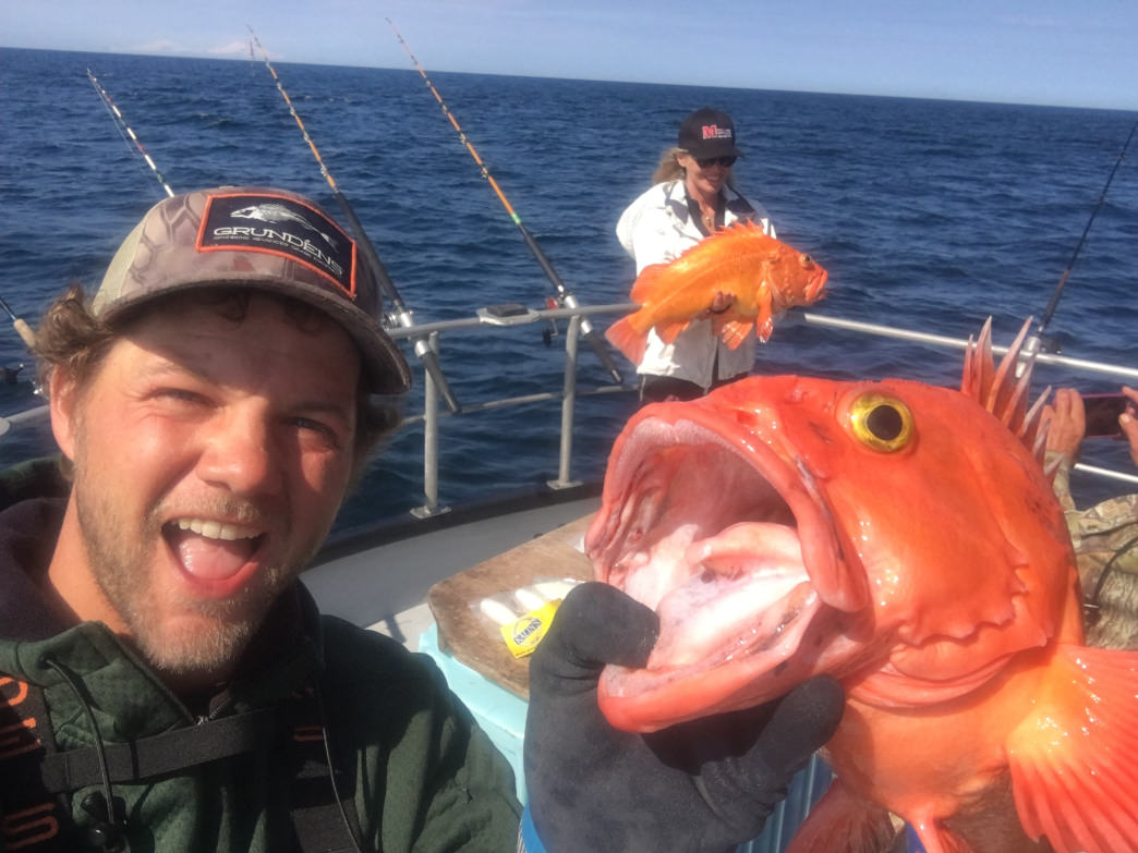 This is what happens to the goldfish you flush down the toilet (no, not really). Yellow-eyed rockfish caught off Elizabeth Island.