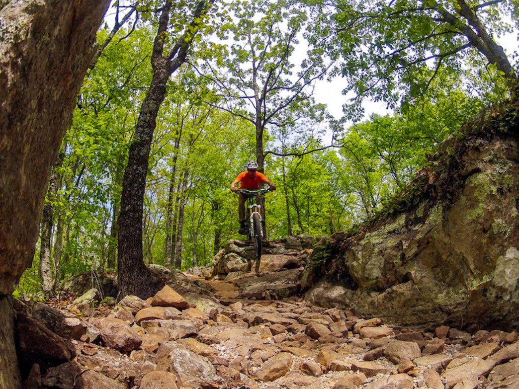 The trails at Coldwater Mountain have something for everyone.