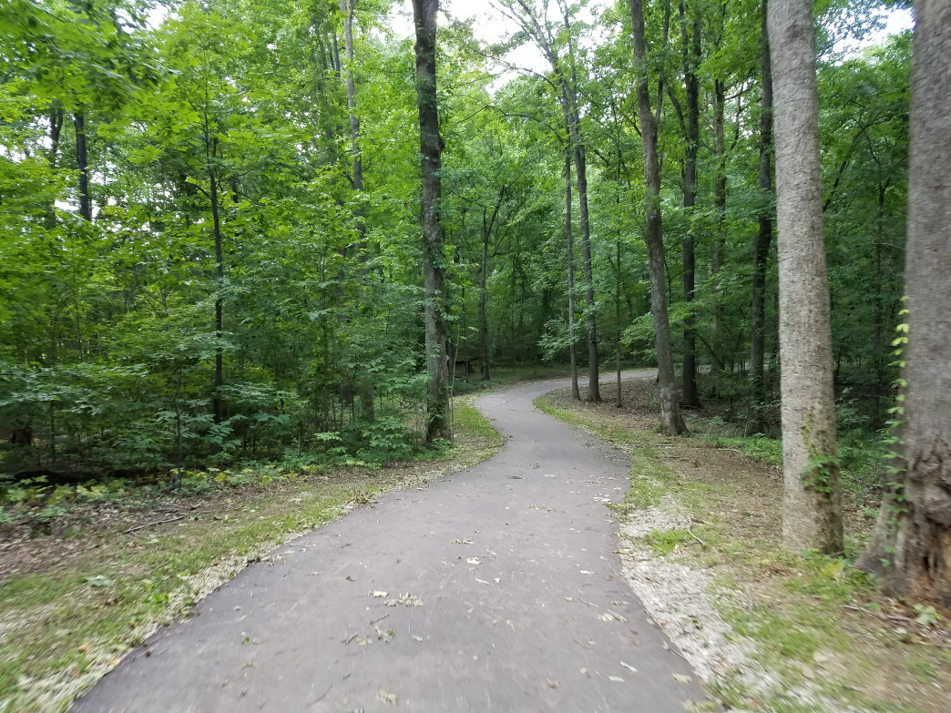 The Wolf River Greenway, open for hiking and cycling, meanders through protected forests and wetlands.     Ryan Hall