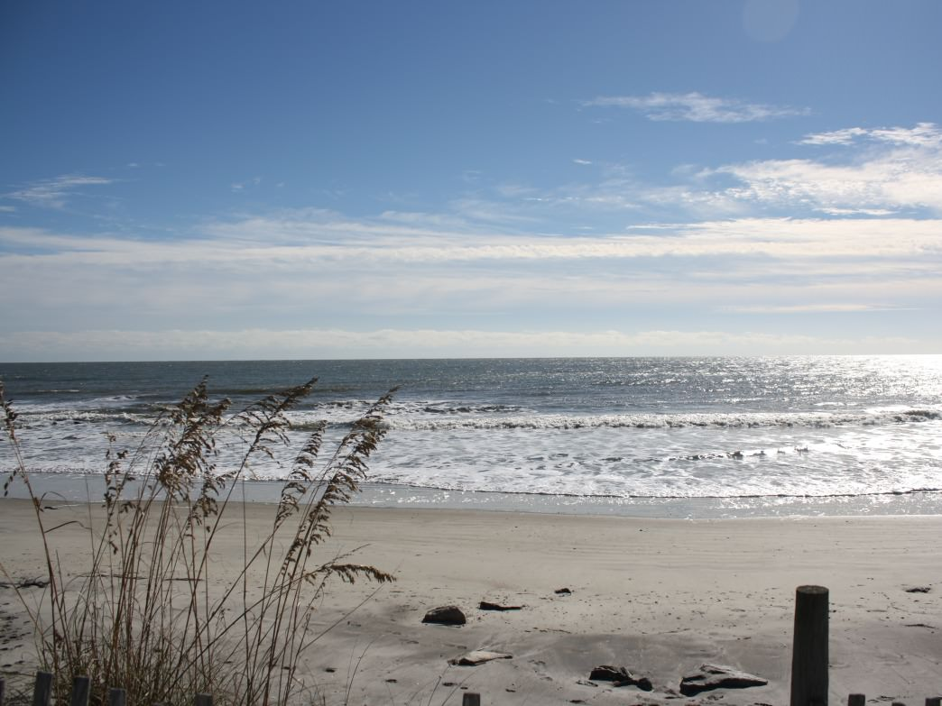 The lowdown on surf fishing in charleston for Surf fishing virginia beach