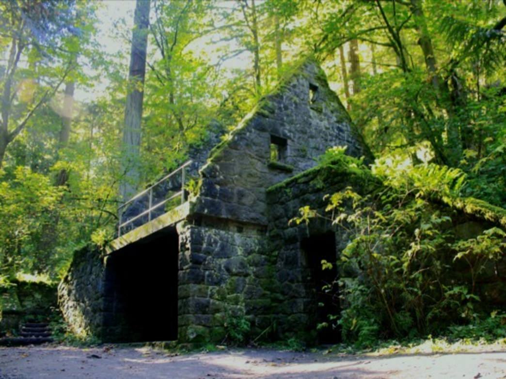 A moss-covered stone foundation is just one of the landmarks in Forest Park.