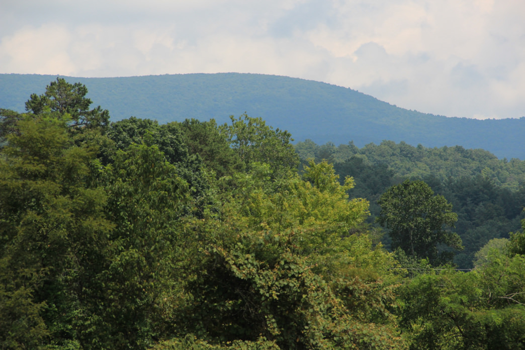 Springer Mountain marks the start of the Appalachian Trail.