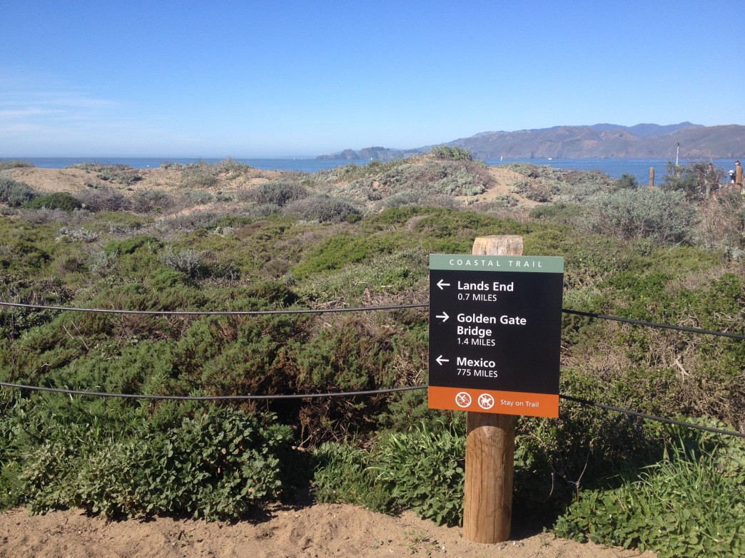 Land's End is one of the most popular, and beautiful, hikes in San Francisco