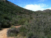 Image for Cheeseboro/Palo Comado - Trail Runing