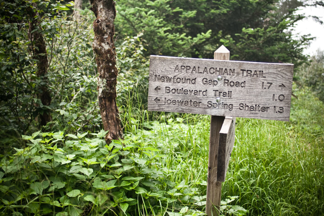 There are tons of options along the 94-mile section of the Appalachian Trail that runs through Tennessee.
