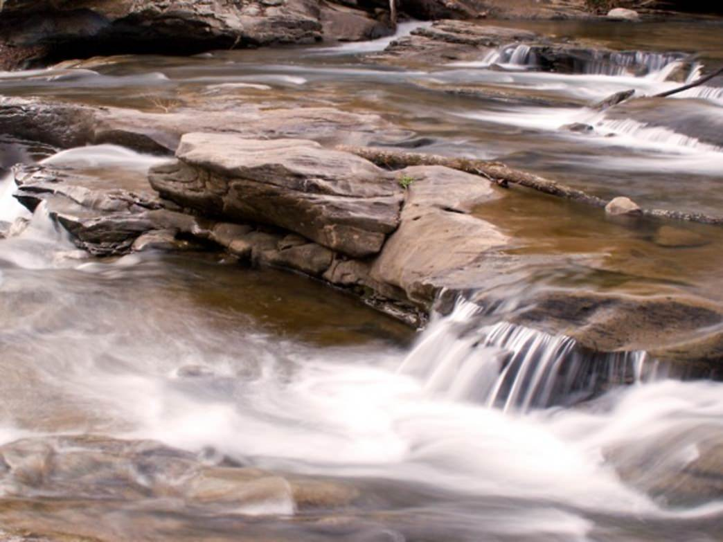 The Turkey Creek Nature Preserve offers a scenic and convenient location close to Birmingham.