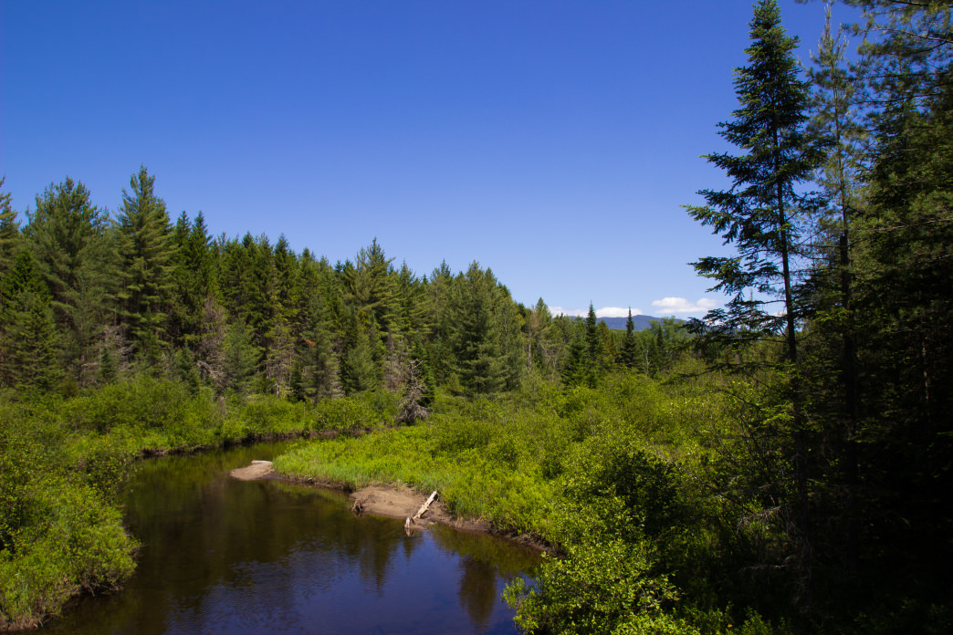 While water is plentiful, most of the NPT involved hopping from lake to lake or pond to pond. The West Branch of the Sacandaga River is one of the major flowing waterways the route sees.     Grant Sponable
