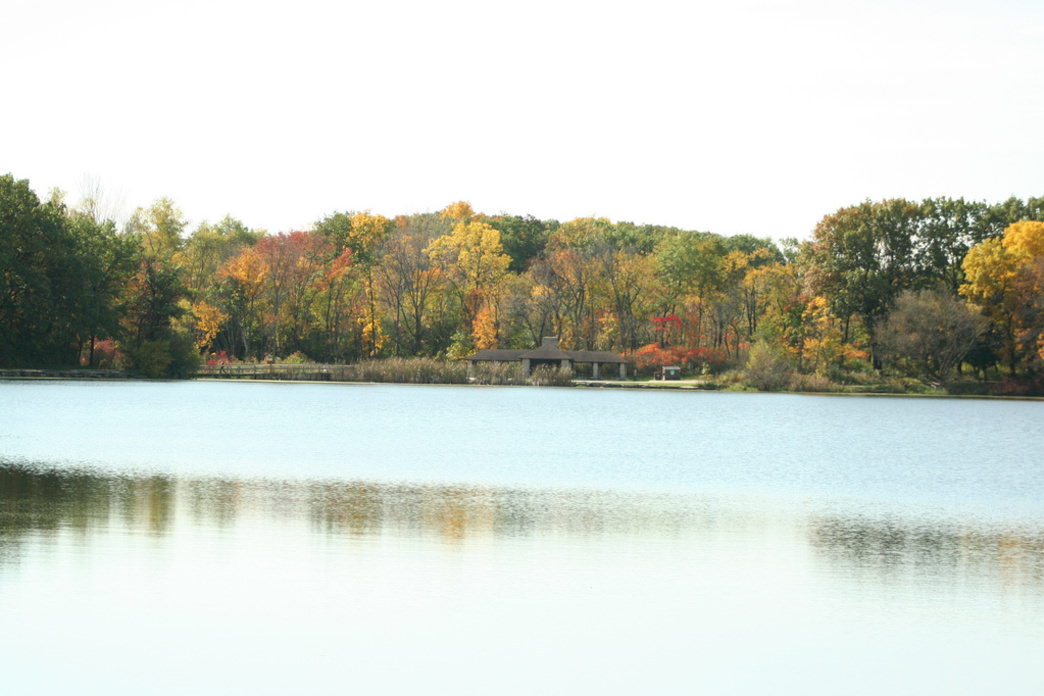 The Cocoa Run and Walk course features the trails at Danada and Herrick Lake (above) forest preserves.