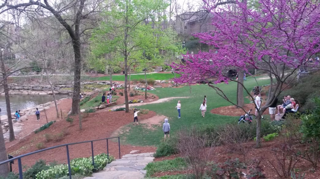 Open spaces are an important tenet of Greenville's design